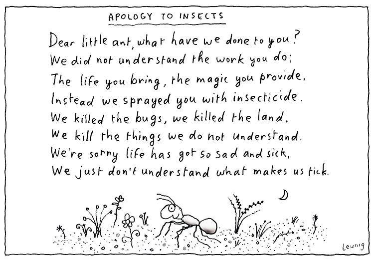 apology to insects