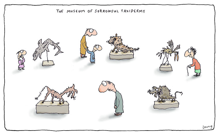 taxidermyW